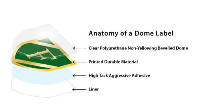 Anatomy of a DOME label